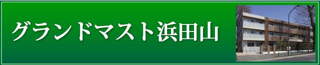 グランドマスト浜田山